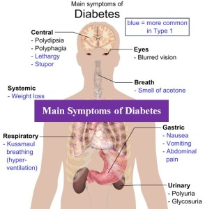 """causes symptoms and treatment of diabetes Diabetes is a chronic disease that can affect dogs and cats and other animals (including apes, pigs, and horses) as well as humans although diabetes can't be cured, it can be managed very successfully diabetes mellitus, or """"sugar diabetes,"""" is the type of diabetes seen most often in dogs it."""