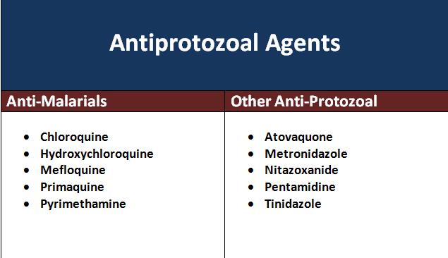 ANTIPROTOZOAL DRUGS PDF