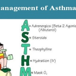 Management-of-Asthma