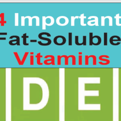 fat-soluble-vitamins-1