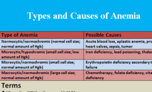 types-and-causes-of-anemia