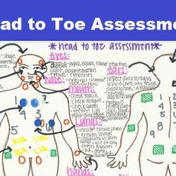 head-to-toe-assessment-2