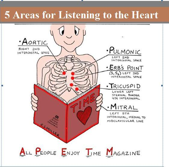 areaas-for-listening-to-the-heart