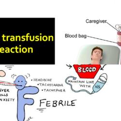 transfusion-reactions