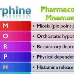 morphine-phammocology-mnemonics