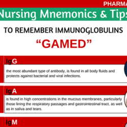 types-of-immunoglobulins