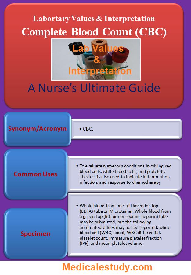 complete-blood-count-cbc-for-nurses