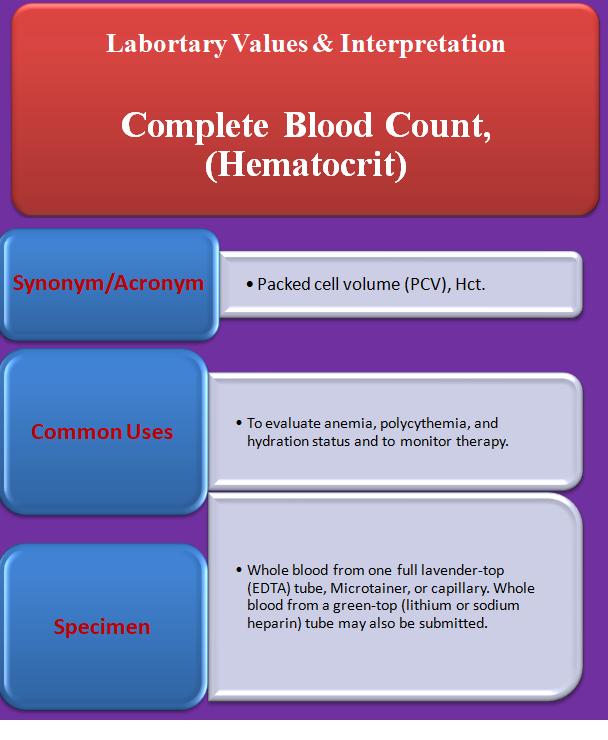 complete-blood-count-hematocrit
