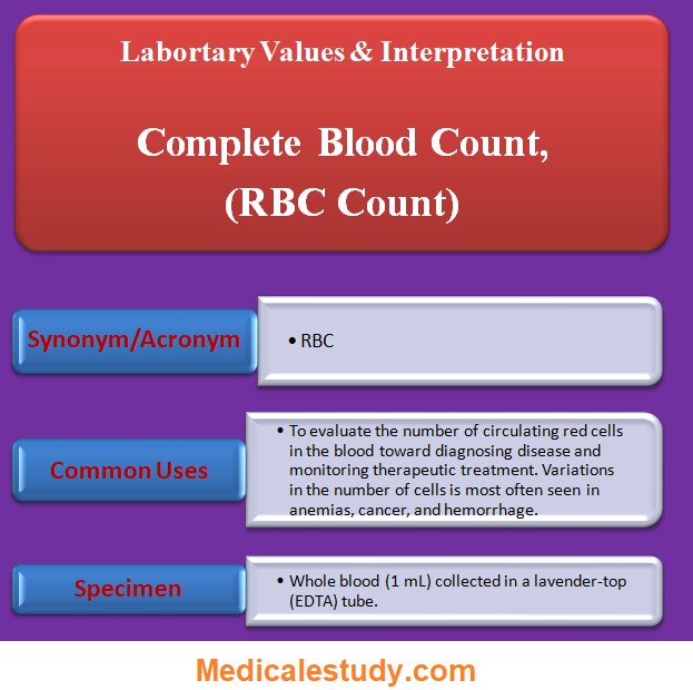 complete-blood-count-rbc-count