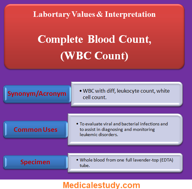 complete-blood-count-wbc-count