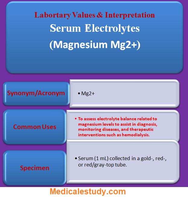serum-electrolytes-magnesium