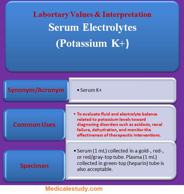 serum-electrolytes-posassium