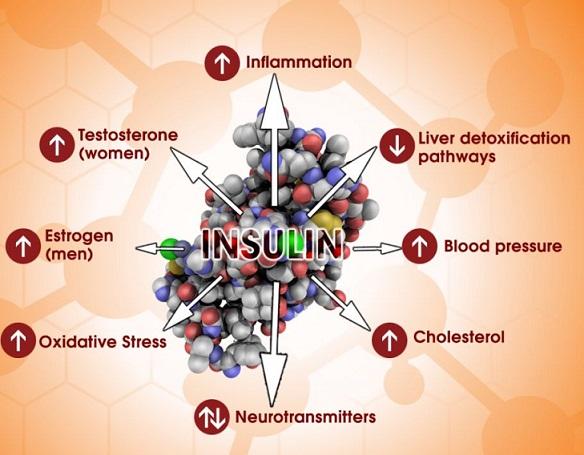 diabetes_insulinchart-copy
