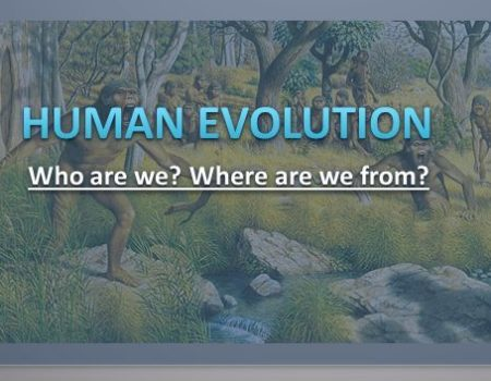 who-is-human